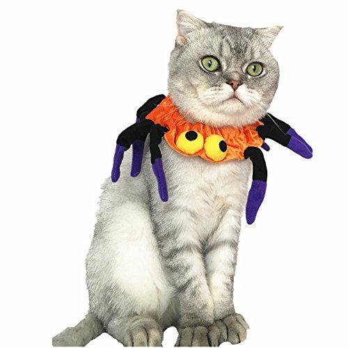 Cool Halloween Up Party Kleid Zubehör verstellbar Pet Kostüm Spider Halsbänder Hals Kleidung Krawatte Geschenk für Katzen, Baby Welpen, Hunde (Spider Baby Kostüm)