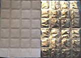 ThermaFreeze XL SuperChilled Silver Ice Eispackungen, 5extragroße Bogen, 25,4x 38cm, 24 4x 6cm große Zellen pro Bogen, kühlend, wiederverwendbar, flexibel, ungiftig, kühlt Stunden länger als Eis, hergestellt in den USA