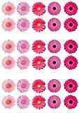 30 rosa Gerbera Blume essbare Wafer Papier Kuchen Topper Dekorationen