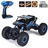 Toy Arena Remote Controlled Rock Crawler RC Monster Truck 1:18 Scale 4Wd Rally Car (Blue)
