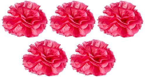 Tissue Pom Poms 5 Stück Hochzeit & Party Dekoration - Sommer Früchte (Party-shop Sf)