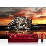 Vlies Fototapete 200x140 cm PREMIUM PLUS Wand Foto Tapete Wand Bild Vliestapete - Tiere Tapete Jaguar Sonnenuntergang Wasser orange - no. 315