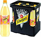 Schweppes Fruity Citrus 1 l