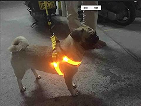 Led Flashing Dog Harness, Strong Nylon Webbing, Comfortable , Glowing Sparkling And Glistering Harness For Night Safety, Comfortable For Small Medium Large Dog And Other Pet-Large , S , Yellow Back