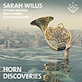 Horn Discoveries