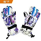 FULAISI Winter Snow Skiing Gloves, Unisex Waterproof Windproof Gloves Thermal Snowboarding Gloves Cold Weather Gloves for Hiking Climbing Skiing Riding Snowmobile