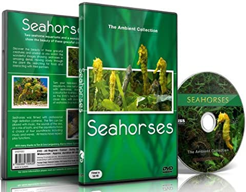 Aquarium DVD-Seepferdchen - mit entspannender Musik und Natur Geräuschen