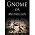 Gnome or Mr Nice Guy (The Rooks Ridge Series Book 2)