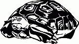XL WL114 Aufkleber Schildkröte Turtle 55x29cm - Wandtattoo Wohnzimmer fürs Kinderzimmer Wandaufkleber Wandtatoos Sticker für die Wand, Fensterbild, Tapete, Fliesen, Autoaufkleber, Türaufkleber, Auto