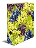 Herma 7111 Karton Motivordner DIN A4, Serie Früchte, Design Trauben, 70 mm breit, 1 Ordner, mit Innendruck