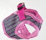 Brustgeschirr mit Leine und / Autosicherheitsgurt gratis / Brustumfang 35-36 cm, Länge 14 cm