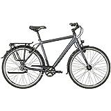 Bergamont Vitess N8 FH Herren Trekking Fahrrad schwarz/grau 2018: Größe: 56cm (178-186cm)