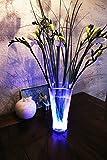 Zauberhaftes LED Unterwasserlicht Unterwasserleuchte Stimmungslicht Dekolicht zur effektvollen Beleuchtung von Teichen, Bachläufen, Pool, Vasen oder der Badewanne - mit wundervollem Farbwechsel - LED Dekolicht mit 10 LED Lämpchen - mit Fernbedienung und...