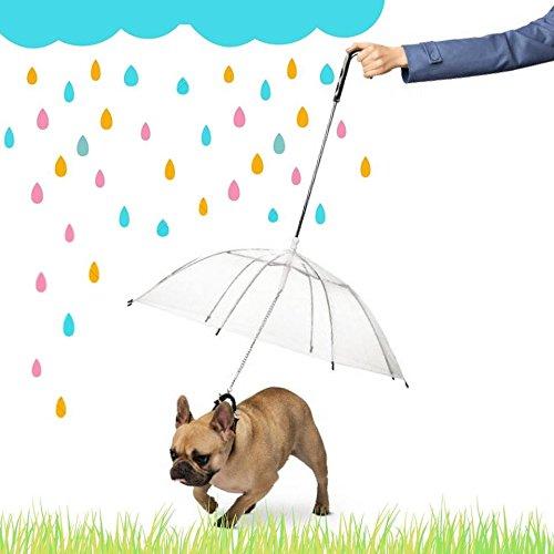 Ducomi® dogbrella - ombrello per cani e cuccioli completo di guinzaglio - leggero e maneggevole - offri il meglio al tuo cane durante le giornate di pioggia - Ø 75 cm