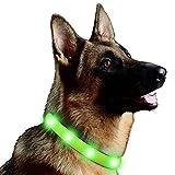 Lalawow LED Hundehalsband USB Wiederaufladbare FREIE Größe 3 Modi Völlig Wasserdicht (Grün)