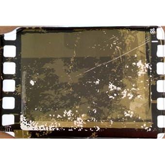 Old Film Reel Oyster Card Halter