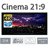 HiViLux - Pantalla marco (ganancia 1.0, tela blanca tipo cine/3D/4K/UHD, cuadro de aluminio, sin efecto brillo)