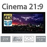 HiViLux Rahmen Leinwand Gain 1,0 Weiss Tuch aus Referenz Kinofolie/3D/4K/UHD/ALU Rahmen/Kein Glitzereffekt o.Hotspot (21:9 Bild:199x85cm 85