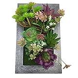 PietyDeko 3D Bilderrahmen mit Sukkulenten Plastikblumen Hängende Sukkulenten Plastik Box Rahmen Pflanzen Dekorative Kunst Violett Grün