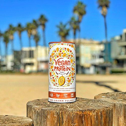 Vegan Protein (Schokolade) - Reis-, Hanf-, Soja-, Erbsen-, Chia-, Sonnenblumen- und Kürbiskernprotein + Kokosmilch, Superfoods und Verdauungsenzymen - 600 Gramm Pulver mit Schokoladengeschmack - 6