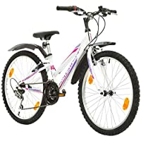 Multibrand, PROBIKE Adventure, 24 Zoll, 290mm, Mountainbike, 18 Gang, Schutzblech-Set, Für Damen, Kinder, Junioren