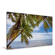 Premium Textil-Leinwand 120 cm x 80 cm quer, Palmenmeer | Wandbild, Bild auf Keilrahmen, Fertigbild auf echter Leinwand, Leinwanddruck: Idyllischer Strandurlaub (CALVENDO Orte)