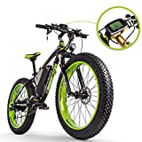 Rich Bit RT-012 1000 W E-Bike eBike Cruiser...