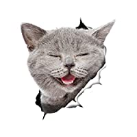 Winston & Bear 3D Cat Stickers - 2 Pack - Laughing Grey Cat Sticker For Wall, Fridge, Toilet And More