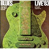 1983 American Folk Blues Festival