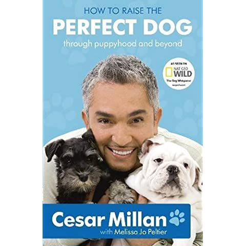 How to Raise the Perfect Dog: Through Puppyhood and Beyond by Cesar Millan ( 2010 ) Paperback