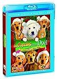 Les Copains fêtent Noël [Combo Blu-ray + DVD]