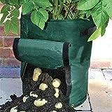 Kicode Al aire libre plantadoras de patatas Vertical Planta de jardín Hierbas Colgar en la pared Greening la planta de semillero