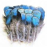 ERGEOB Grün/Blau Kupfer Hühnerfedern Fertigkeit Basteln Feder Fasanenfedern Federhaar 4-8cm/1.5-3 Zoll Länge 100 Stuck (Dunkelblau)