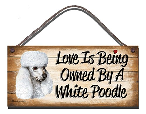 Gigglewick Gifts Geburtstag Anlass weiß Pudel Holz Funny Wandschild, mit englischsprachiger Aufschrift Love is Being Owned by A weiß Pudel