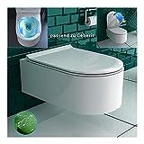 Spülrandloses Keramik Hänge-WC mit WC-Sitz Rimless aus Duroplast mit SoftClose Absenkautomatik| Wand-WC mit Nanobeschichtung | Keramikschüssel D-Form Weiß | passend zu Geberit