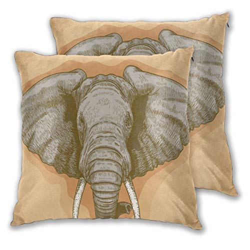 """Elephant Throw Pillow Cushion Cover, Illustration of Engraving Wild Elephant Head In Retro African Animal Nature Boho,Set of 2 Decorative Square Accent Pillow Case, Grey Almond_2,Size:22\""""x22\"""" inches"""