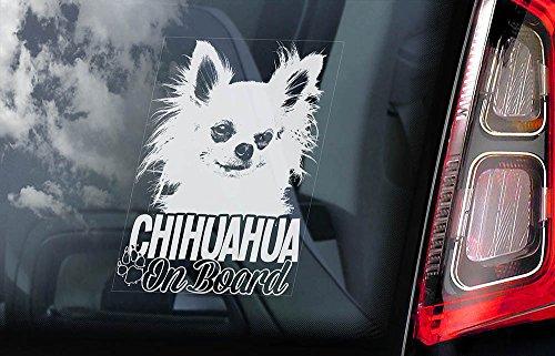 chihuahua-car-window-sticker-dog-sign-internal-reverse-printed-v05