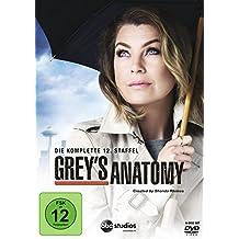 Grey's Anatomy: Die jungen Ärzte - Die komplette 12. Staffel