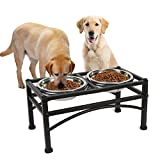 Funkeen Pet Raised Dog Bowls Double Stainless Steel Water Food Feeder Bowls for Puppy Dogs Cats with Dog Feeding Station(Large)