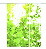 "Home fashion 88512-168 Schiebevorhang Digitaldruck ""Leaf"""