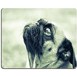 Alfombrilla de caucho natural perro carlino