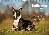 Bullterrier 2015 - Kleine Clowns mit großem Herz (Wandkalender 2015 DIN A4 quer): Bullterrier, wie sie sind. Witzig und frech. (Monatskalender, 14 Seiten)