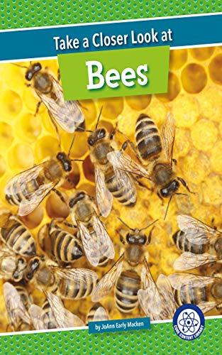 Take a Closer Look at Bees (English Edition)