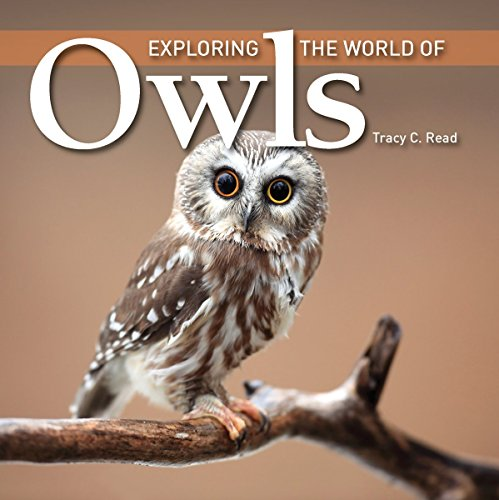 Exploring the World of Owls (Exploring the World of (Firefly Books)) by Tracy C. Read (1-Sep-2011) Paperback