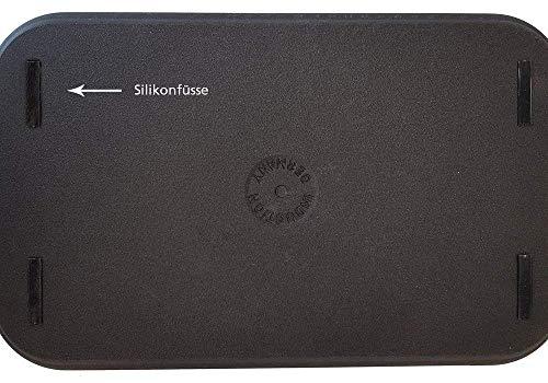 510kATSaCHL - Eurolux Aluminium-Guss Grillplatte für INDUKTION (mit Seitengriffe) 41 x 24 x 2,5 cm in Premium Qualität (A Ware, Neueste Serie) 1 Monat Geldzurückgarantie! - Made in Germany - PFOA-Free