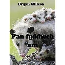 Pan fyddwch am (Welsh Edition)