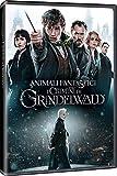 Locandina Animali Fantastici - i Crimini di Grindelwald  (DVD)