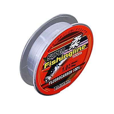 Yiitay 100 Meters Outdoor Fishing Line Transparent Nylon 21KG Pulling by Yiitay