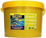 Tropical Malawi Flockenfutter für Malawisee-Cichliden