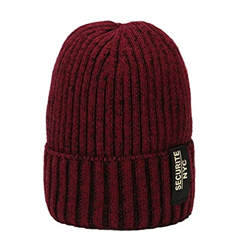 Beanie Winter Hat Wool Slouch Skull Hat Warm Knitted Unisex ERIC YIAN (wine red)